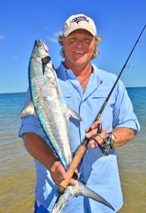 Grey mackerel